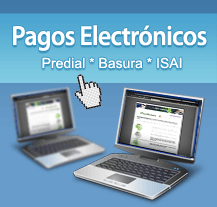 pagos-electronicos
