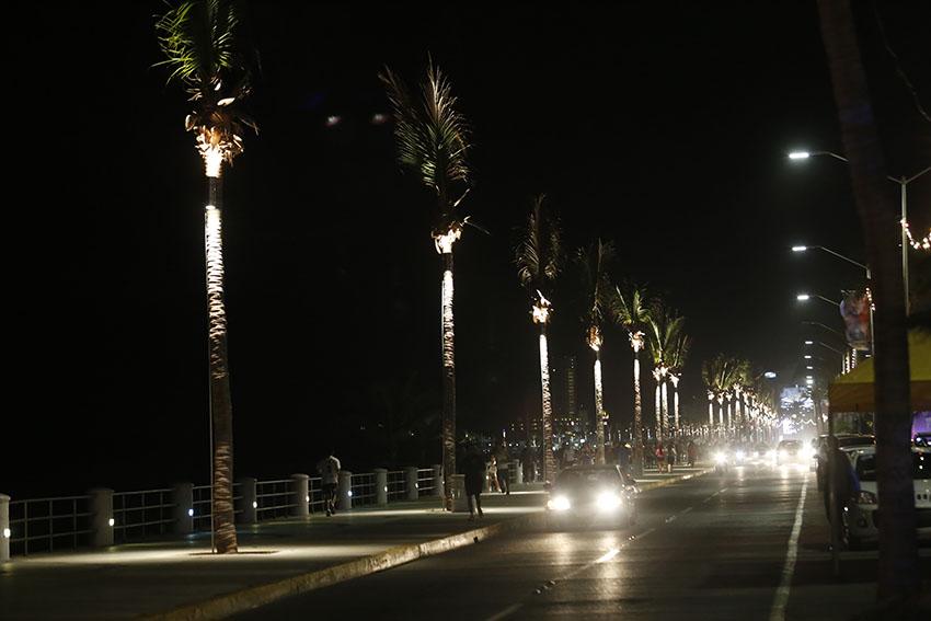 Inaugura el alcalde carlos felton la iluminaci n de las for Iluminacion para palmeras